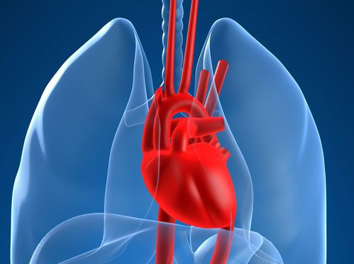 冠状动脉心脏病 引发血管栓塞机率高